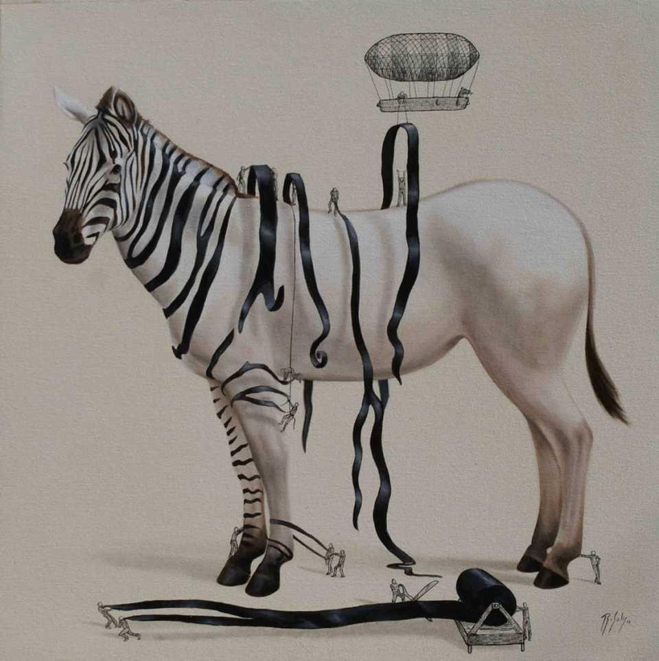 dressing-the-zebra-solis