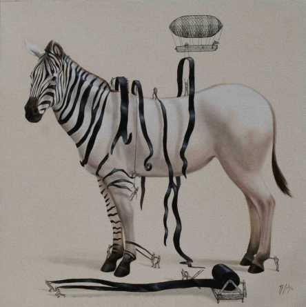 dressing-the-zebra-solis